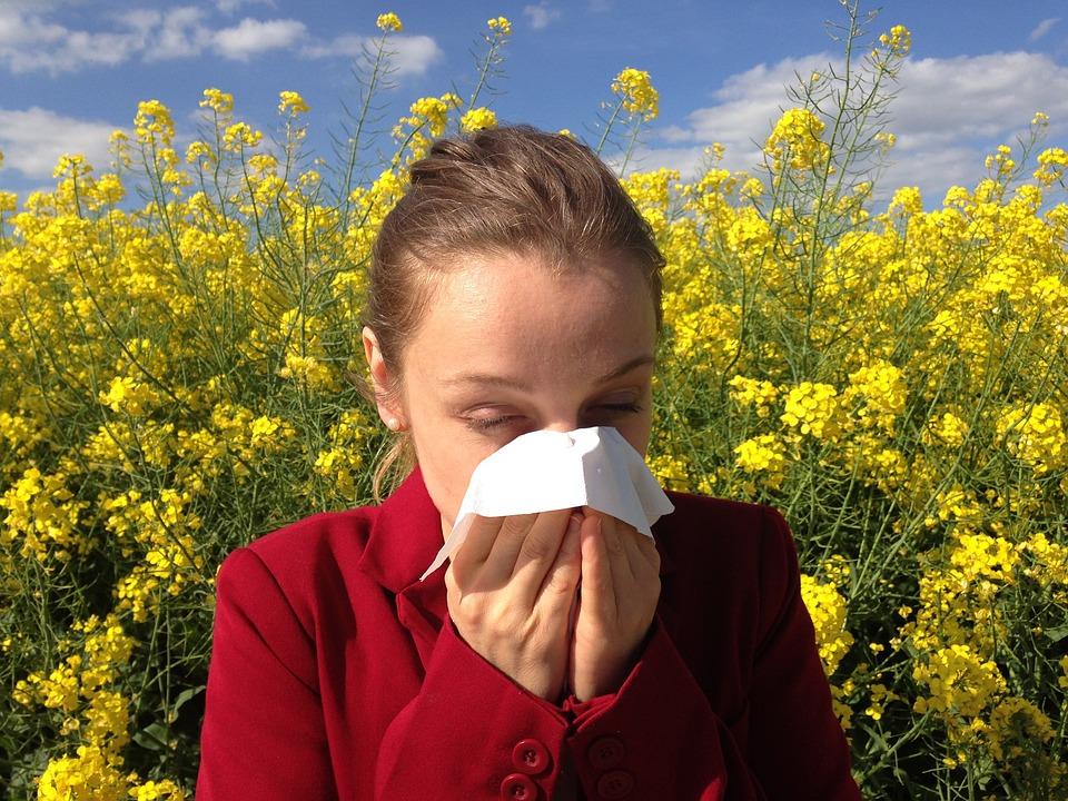 allergie reishi