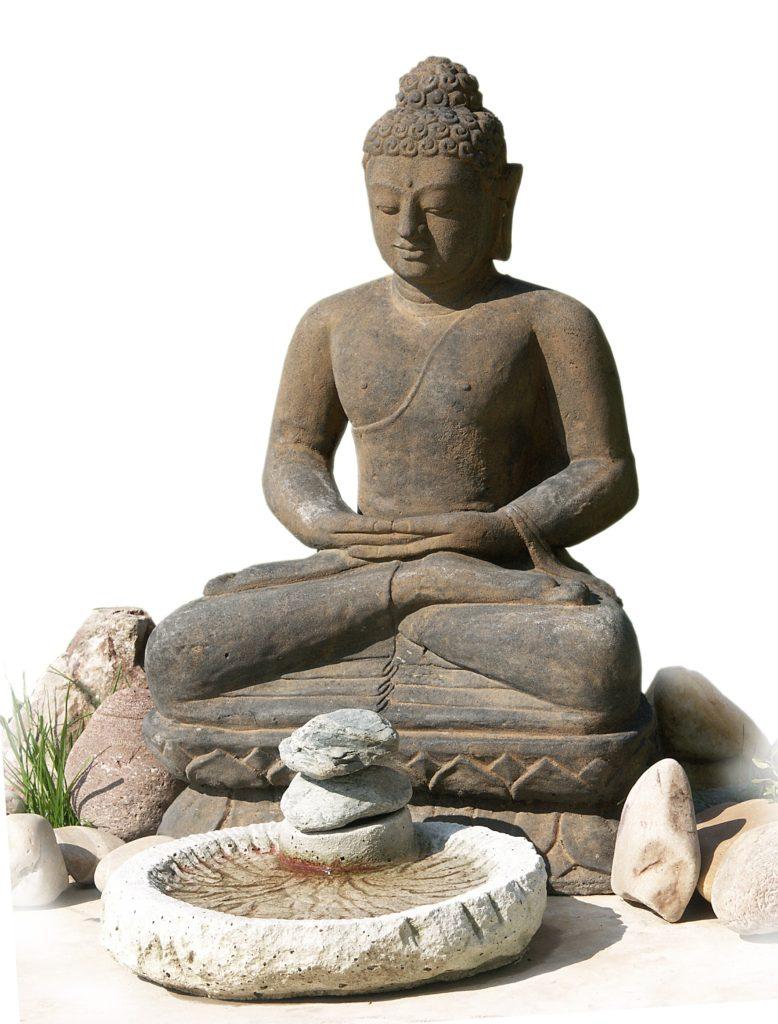 ultime méditation zoom thérapie