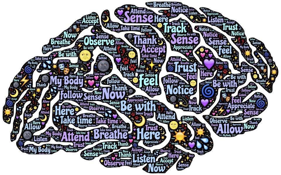 cerveau-pleine-conscience